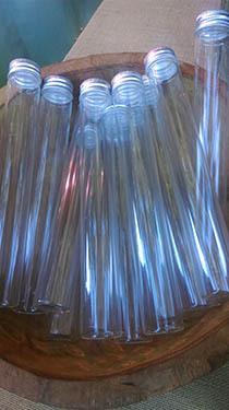 tube en verre vide pour 10 15 gousses madam 39 gascar. Black Bedroom Furniture Sets. Home Design Ideas