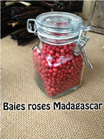 BAIES ROSES de Madagascar en pot